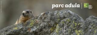 Parc Adula new brand